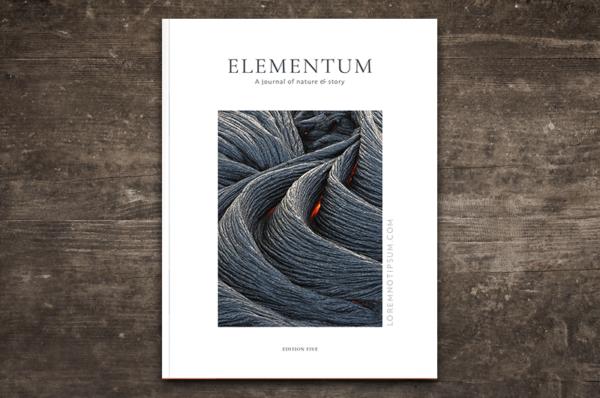 loremnotipsum_elementum-journal_edition-five_cover-600×398