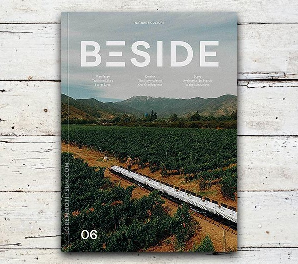 loremnotipsum_beside-magazine_issue06_cover