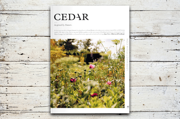 loremnotipsum_cedar-magazine_issue2_cover-600×398