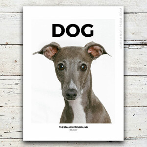 loremnotipsum_dog-magazine_issue7_cover