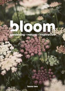BLOOM_Issue-2